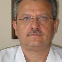 Васил Каракостов